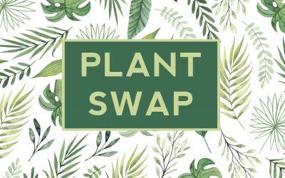 PLANT SWAP : 28.03.2019