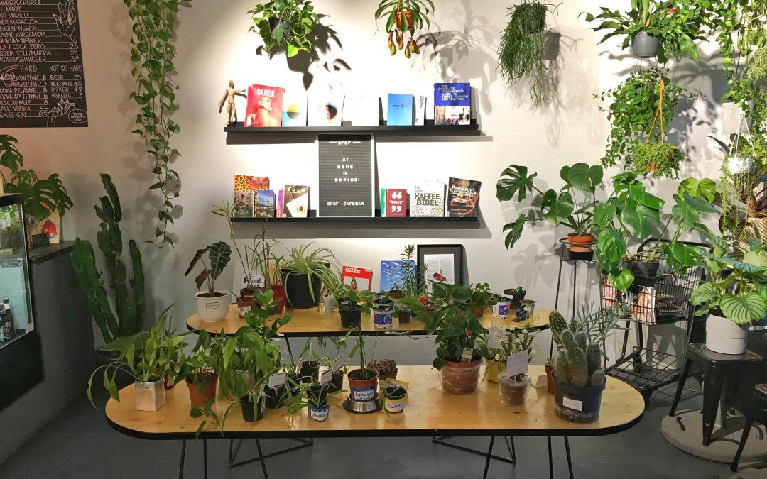 PLANT SWAP                (Summer Edition) : 23.06.2019